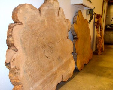 Richmond-Elm-cross-sections-LR-376x300.jpg