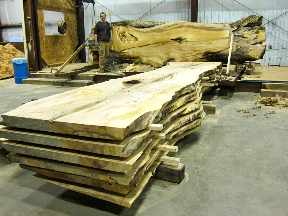 John-with-picnic-maple-slabs-and-log